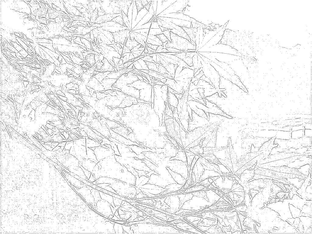 おとなのぬりえ 安曇野の風景 [秋]